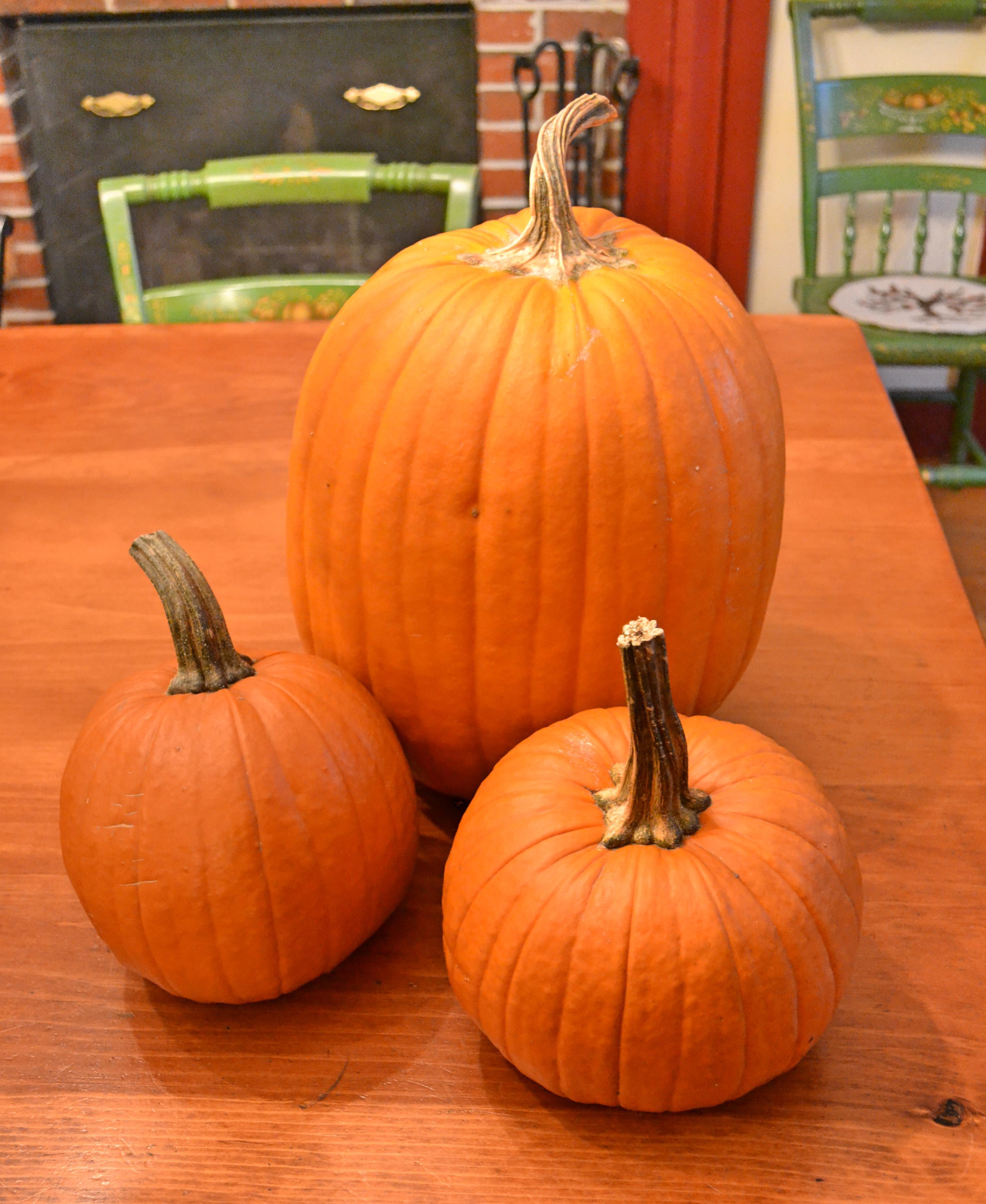 It S Pie Season Prepare Your Pumpkins A Guide To